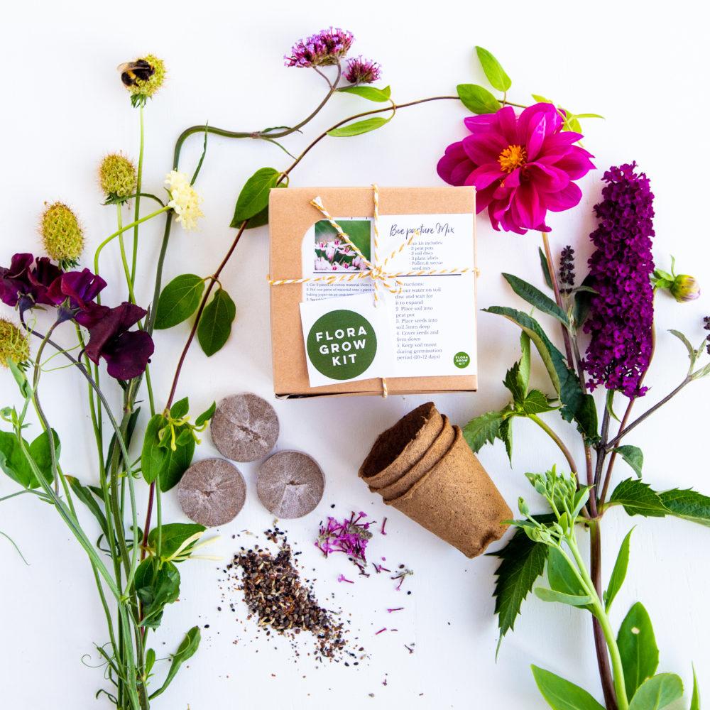 Flora Grow - Bee Pasture Kit